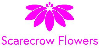 scarecrow-flowers-dublin-ireland-logo
