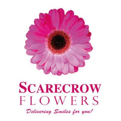 scarecrow-flowers-dublin-ireland